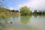 Васильевское озеро
